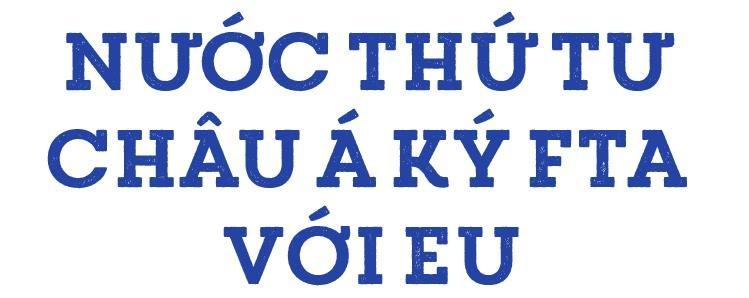 Dai su EU: 'EVFTA co the duoc ky vao cuoi thang 6 hoac dau thang 7' hinh anh 5