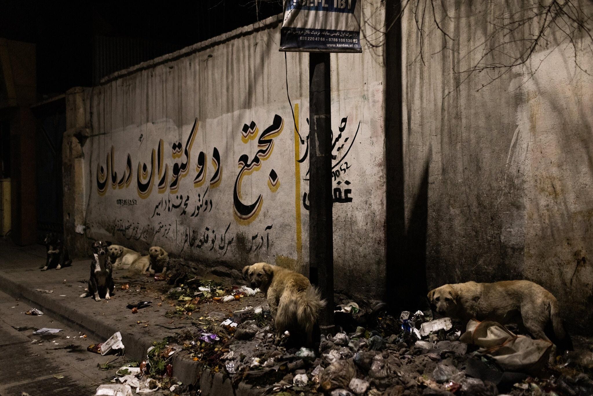 Cho hoang tan cong,  thu do Kabul,  toi pham gia tang anh 3
