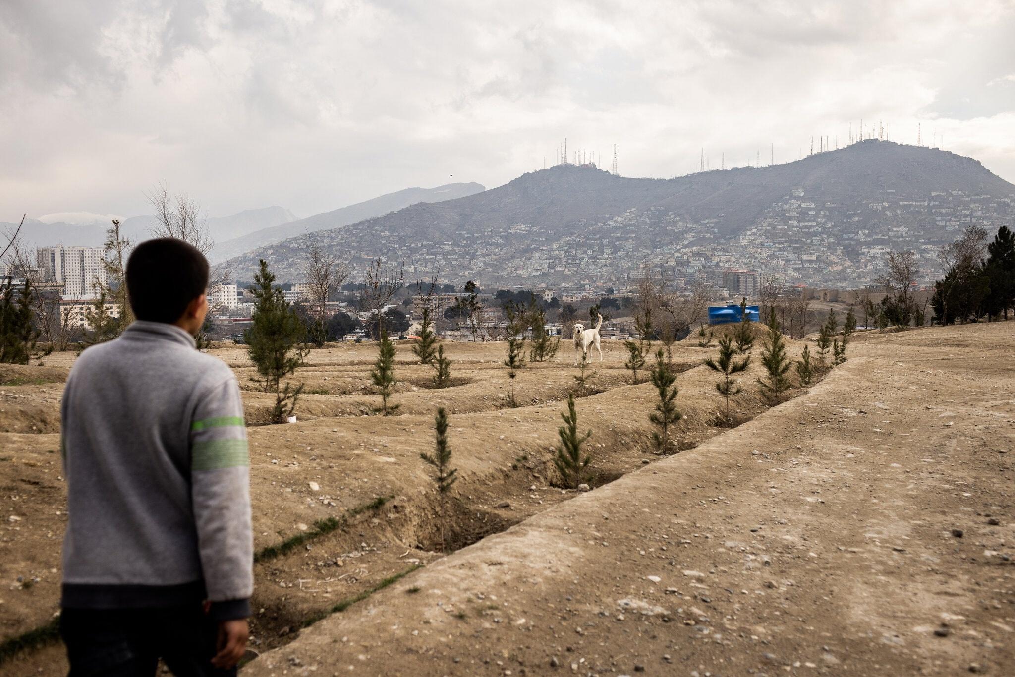 Cho hoang tan cong,  thu do Kabul,  toi pham gia tang anh 5