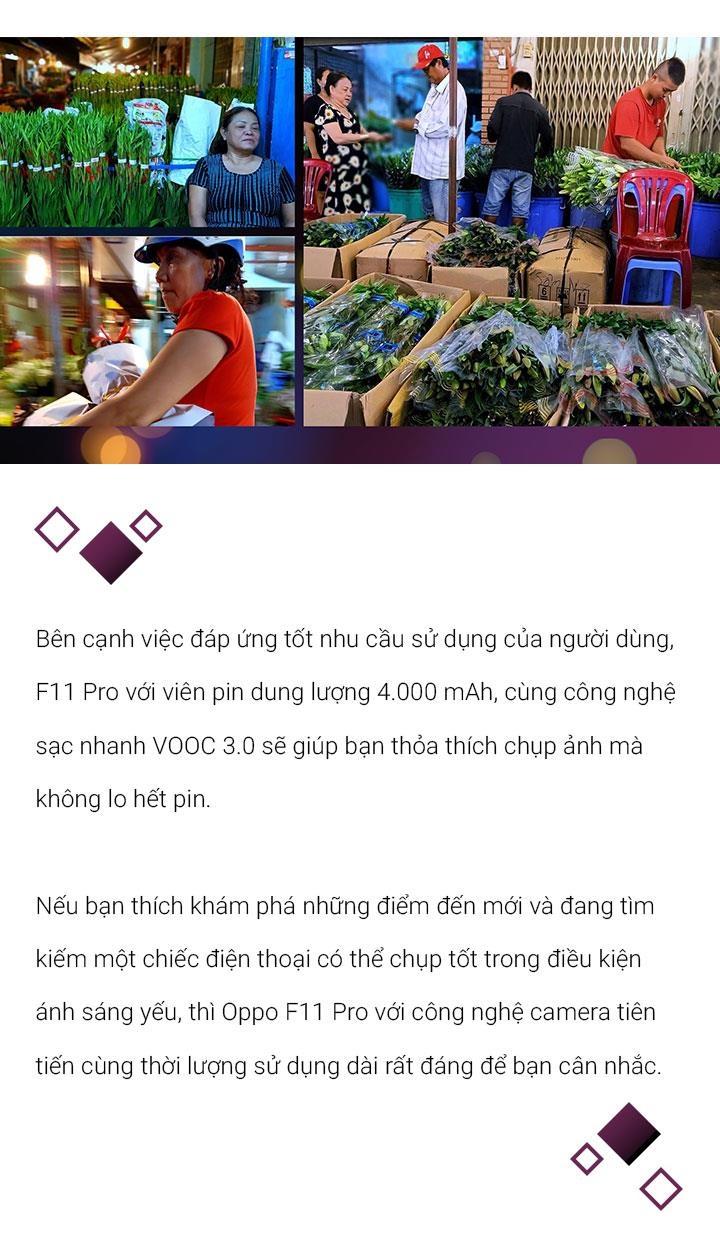 Ngam cho hoa khong ngu giua long Sai Gon hinh anh 11
