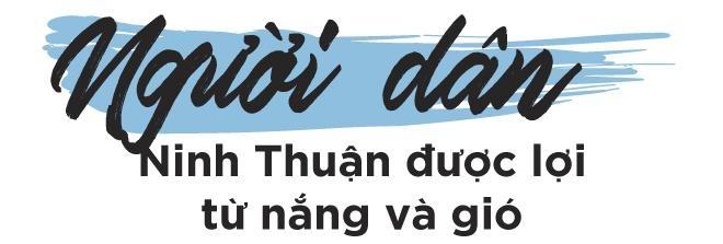 Nha may dien mat troi lon nhat DNA va tiem nang phat trien Ninh Thuan hinh anh 28