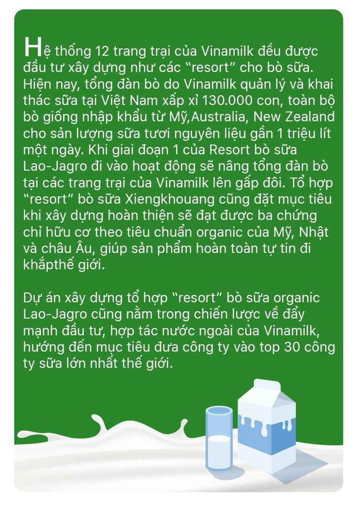 'Resort' bo sua organic cua Vinamilk tai Lao - co duyen va chien luoc hinh anh 16