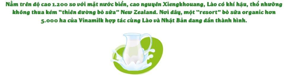 'Resort' bo sua organic cua Vinamilk tai Lao - co duyen va chien luoc hinh anh 4