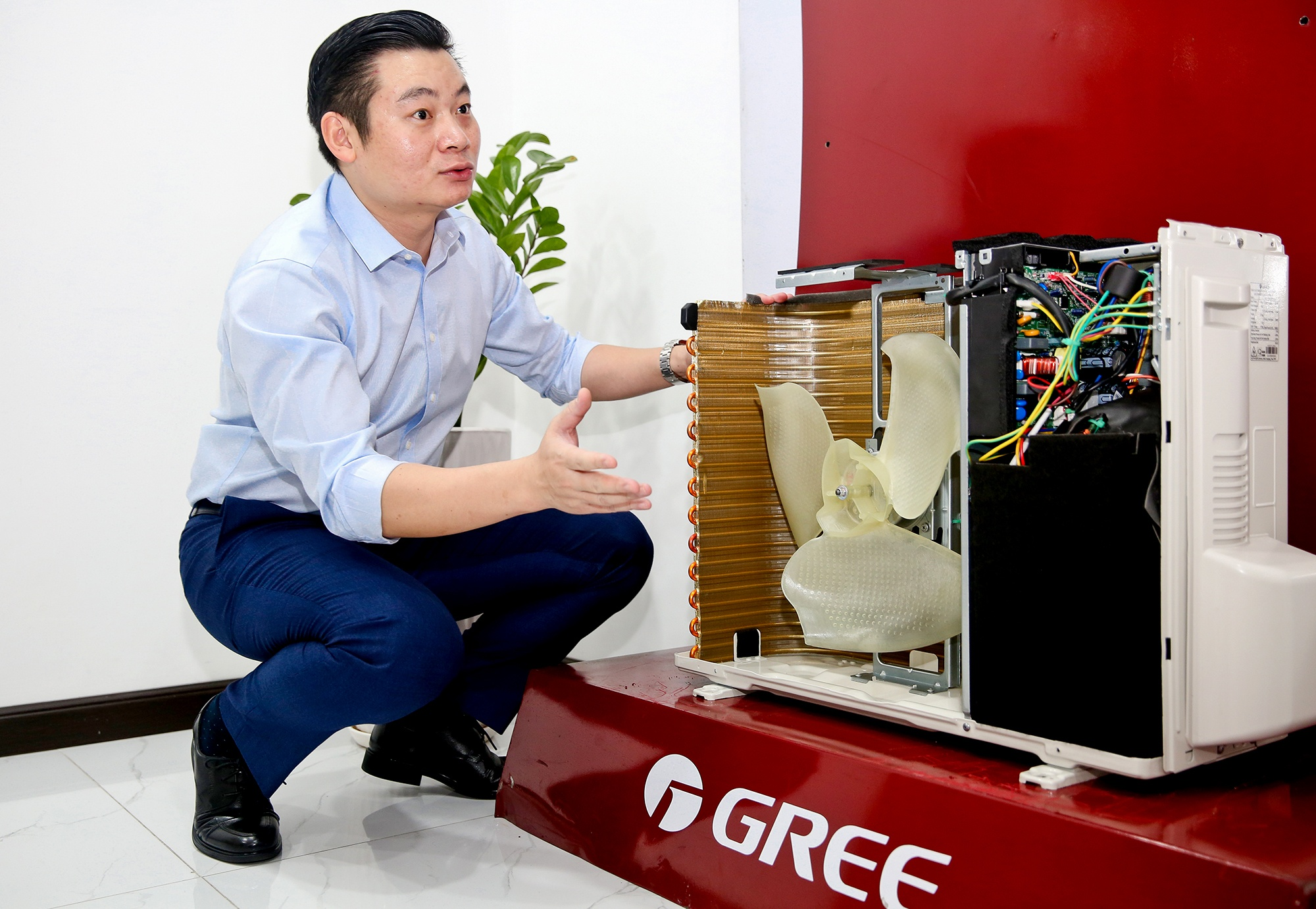 Gree anh 8