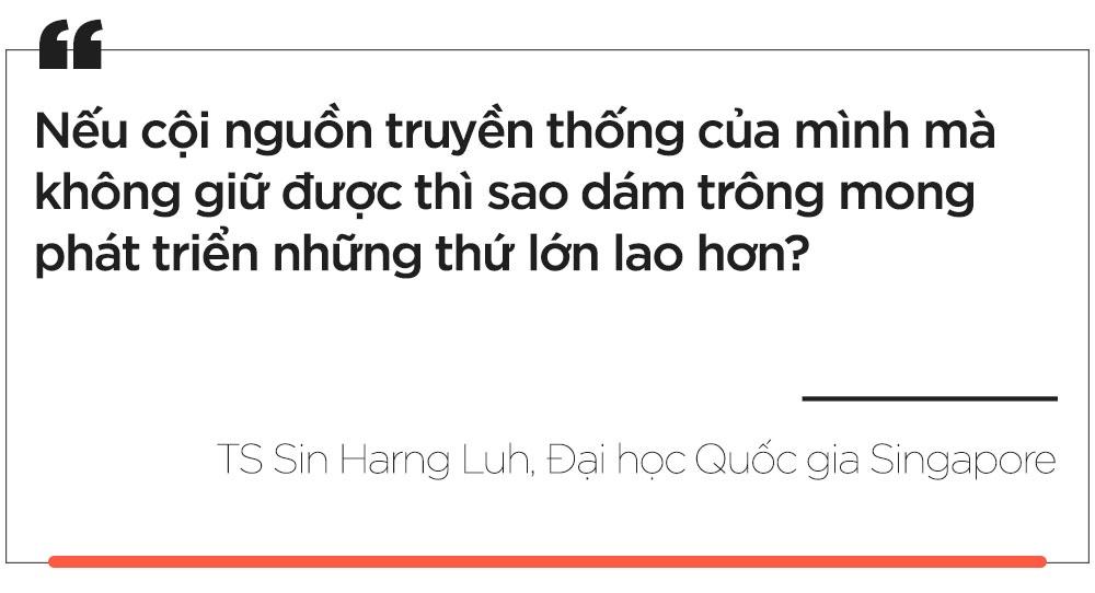 Bo hay giu Tet Nguyen dan? hinh anh 10