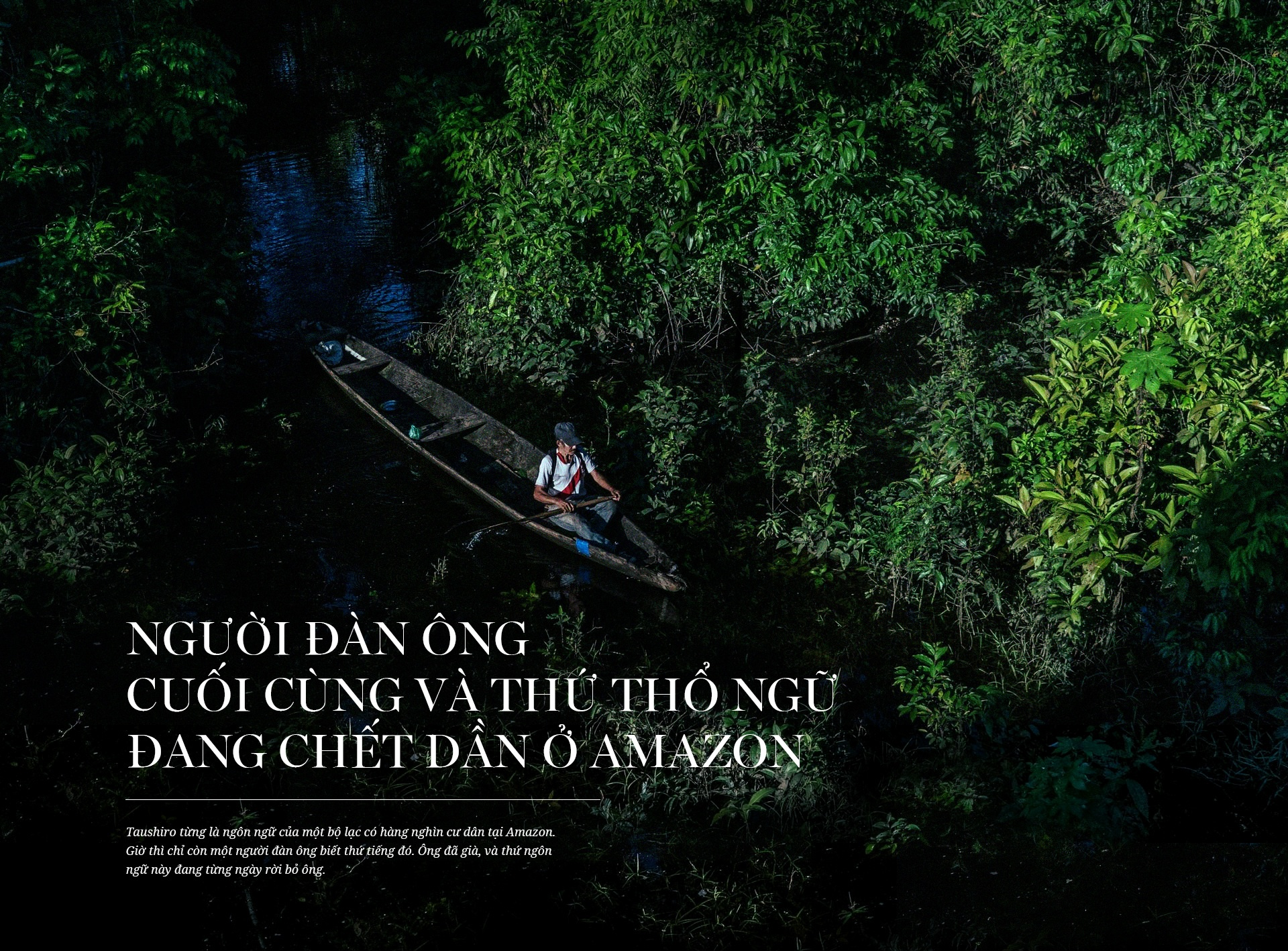 Amazon va nguoi dan ong cuoi cung cua mot ngon ngu hinh anh 2