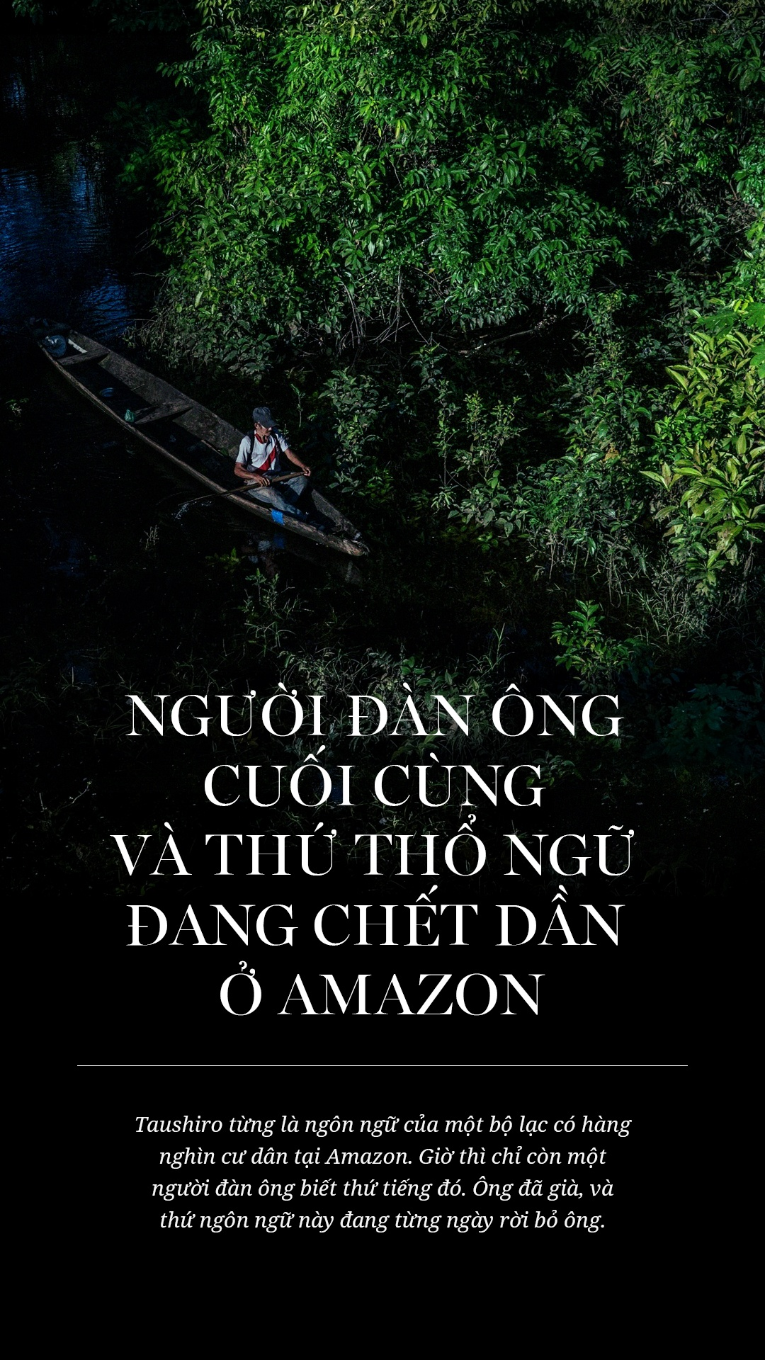 Amazon va nguoi dan ong cuoi cung cua mot ngon ngu hinh anh 1