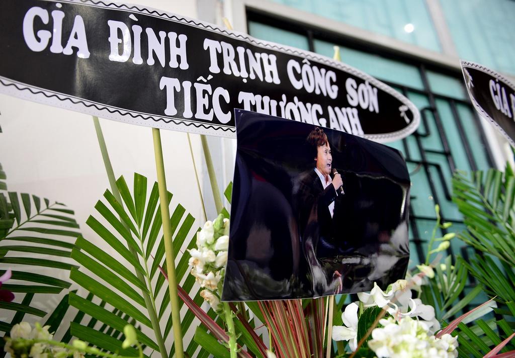 Quang Linh, Cam Van den som tien NSUT Quang Ly hinh anh 9