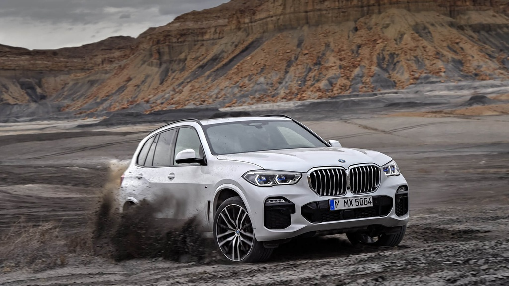 anh BMW X5 2019 anh 12