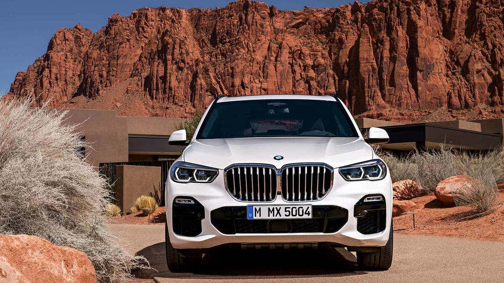 anh BMW X5 2019 anh 4