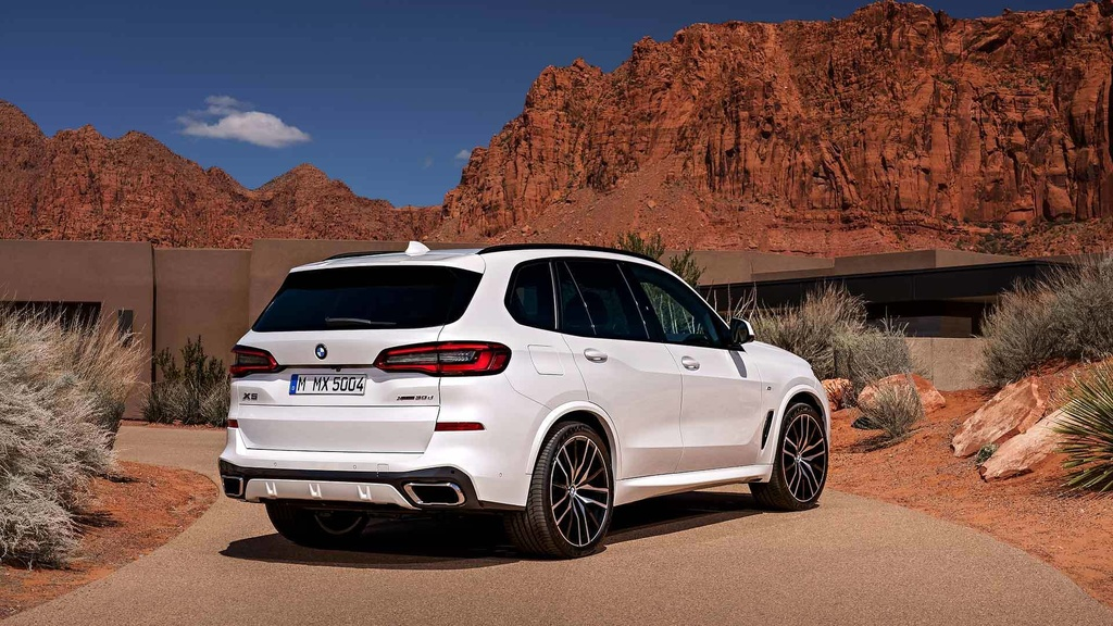 anh BMW X5 2019 anh 5