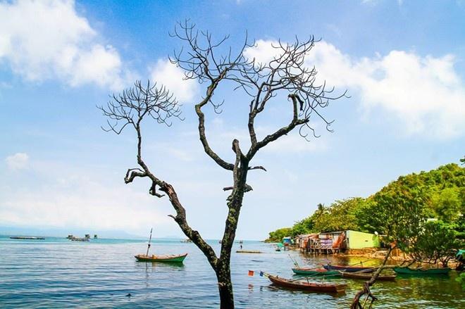 7 thang canh co ten la hut du khach cua Viet Nam hinh anh 12