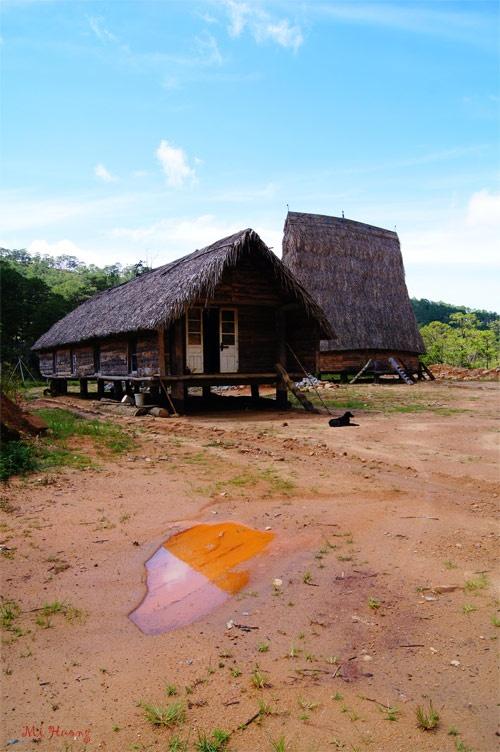 7 thang canh co ten la hut du khach cua Viet Nam hinh anh 4
