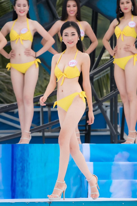 Thi sinh HHVN mac bikini thi Nguoi dep bien hinh anh 8