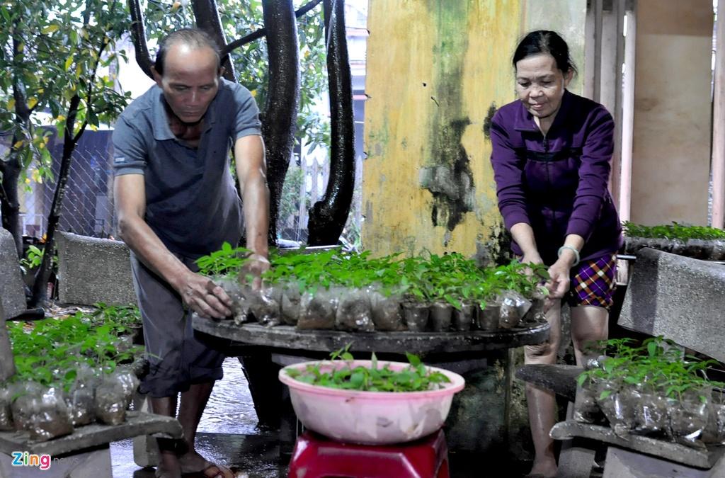 Mua lu Quang Ngai anh 5