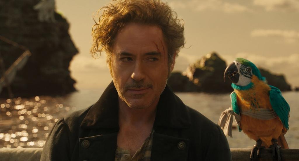 Hau Iron Man, Robert Downey Jr. chang con la mot sieu sao hinh anh 1 018_1_.jpg