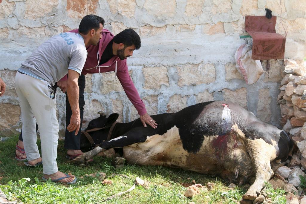 5 nam noi chien Syria: Tan khoc va dai dang hinh anh 15