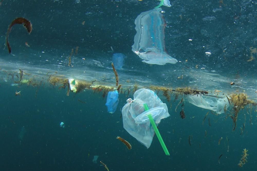 Ống hút nhựa là sản phẩm không phân hủy và rất khó tái chế. Ảnh:Orlando.