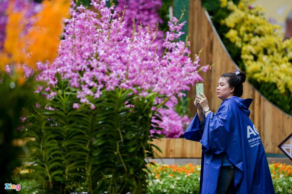Nguoi Sai Gon do xo di ngam hoa lan khi tiet troi diu mat hinh anh 10