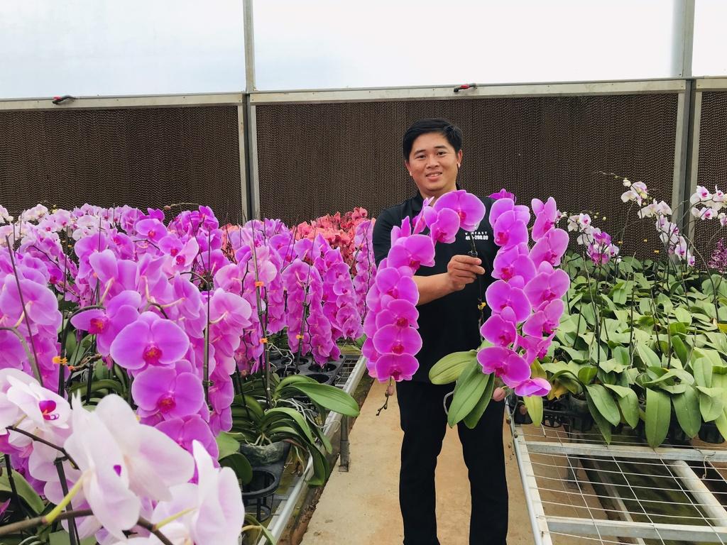 Hoa tuoi Viet Nam canh tranh hoa Trung Quoc anh 4