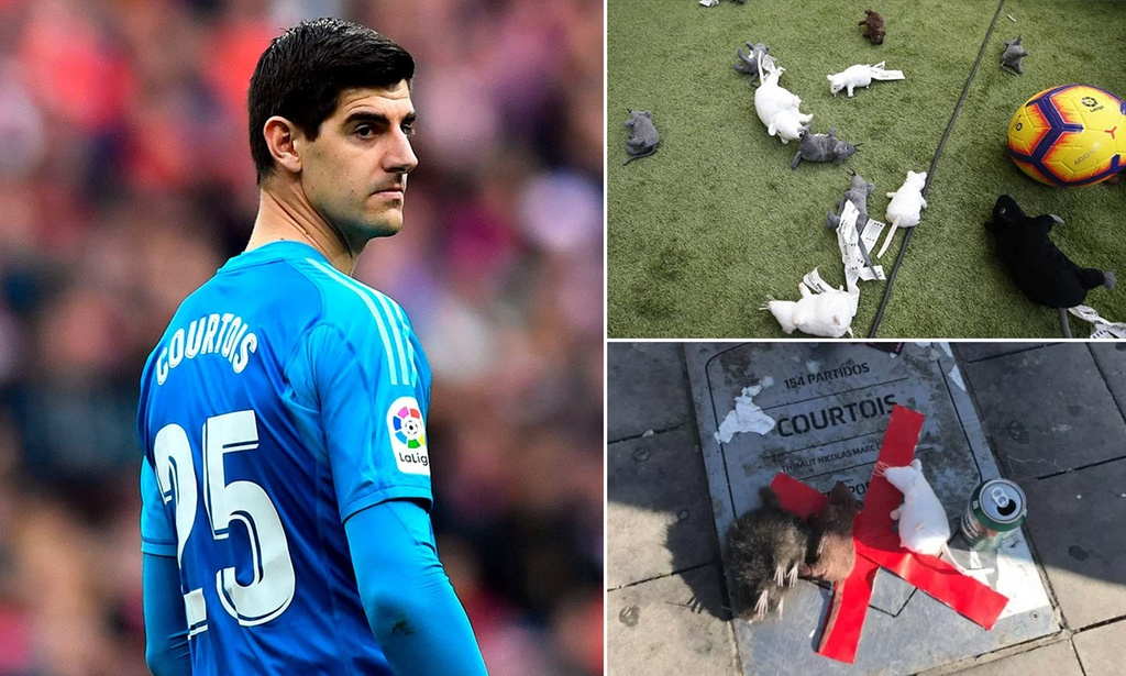 Courtois chung minh gia tri o Real Madrid hinh anh 3 ratcourtois.jpg
