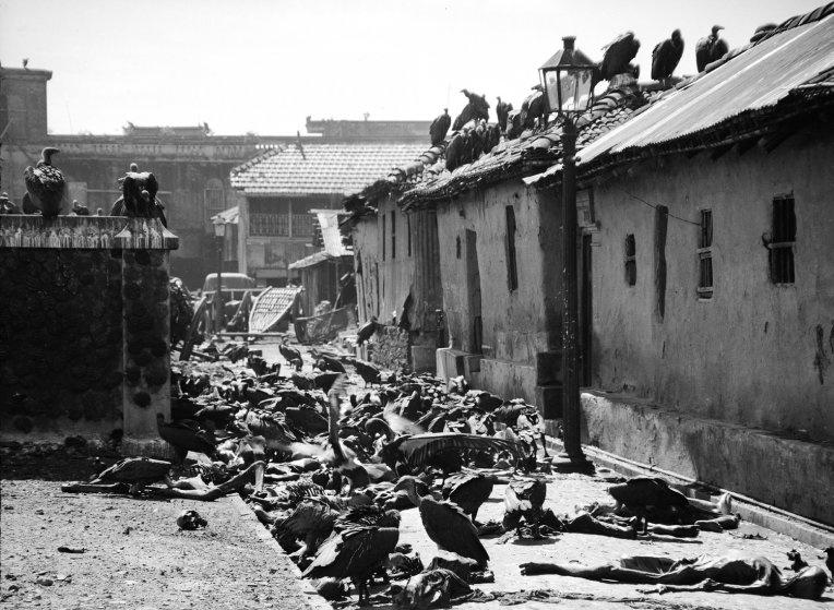 70 nam chia cat An Do, Pakistan: Nhung thang ngay kinh hoang hinh anh 2