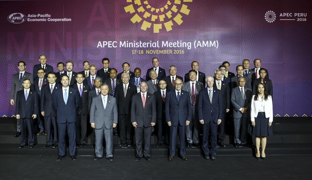 Chu tich nuoc Tran Dai Quang den Peru du hoi nghi APEC 2016 hinh anh 7