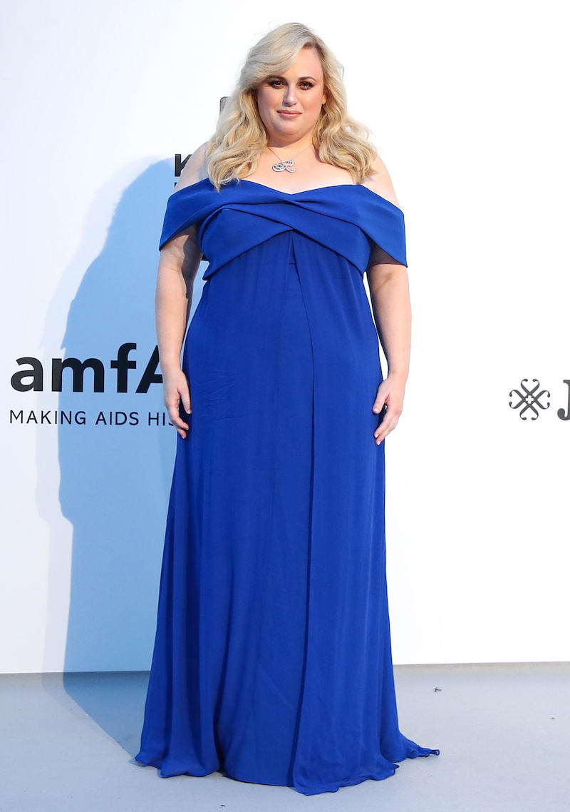 Rebel Wilson giam can anh 9
