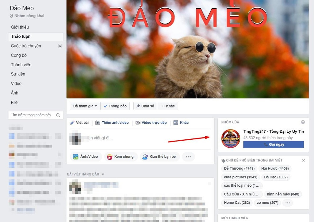 Sau Kha Banh, Tram Anh, ai dang quang ba co bac online o Viet Nam? hinh anh 4