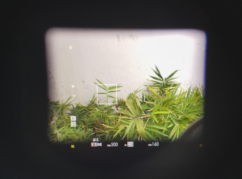 Danh gia Fujifilm X-Pro3 - chi fan cung moi mua hinh anh 8