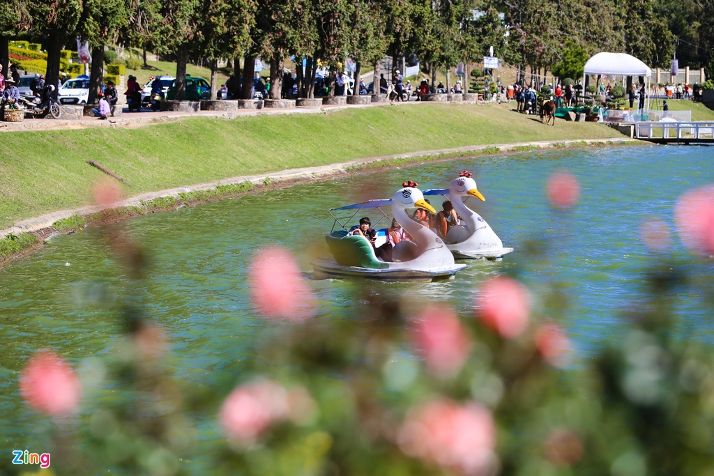 Sac mau ruc ro o festival Hoa Da Lat 2015 hinh anh 16