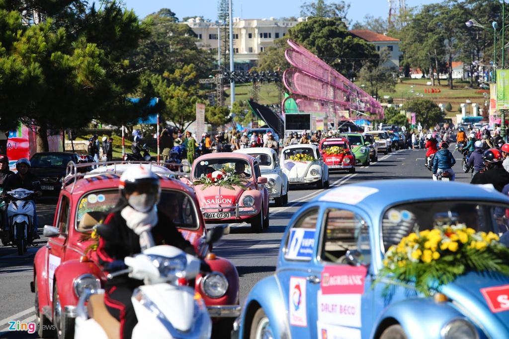 Sac mau ruc ro o festival Hoa Da Lat 2015 hinh anh 2