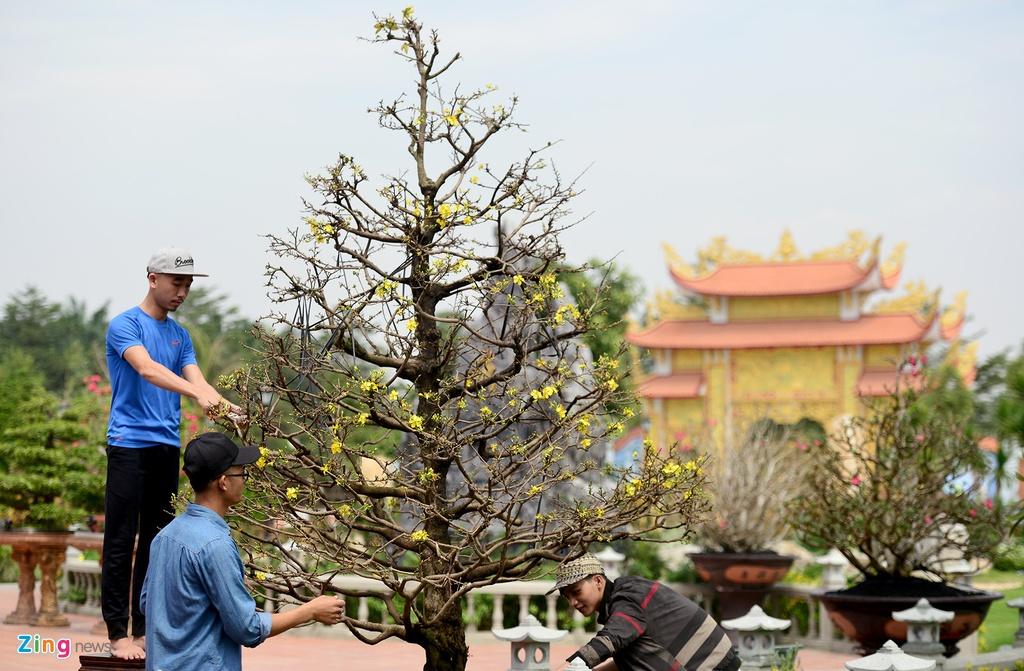 Nha tho To cua Hoai Linh don dep don Tet anh 7