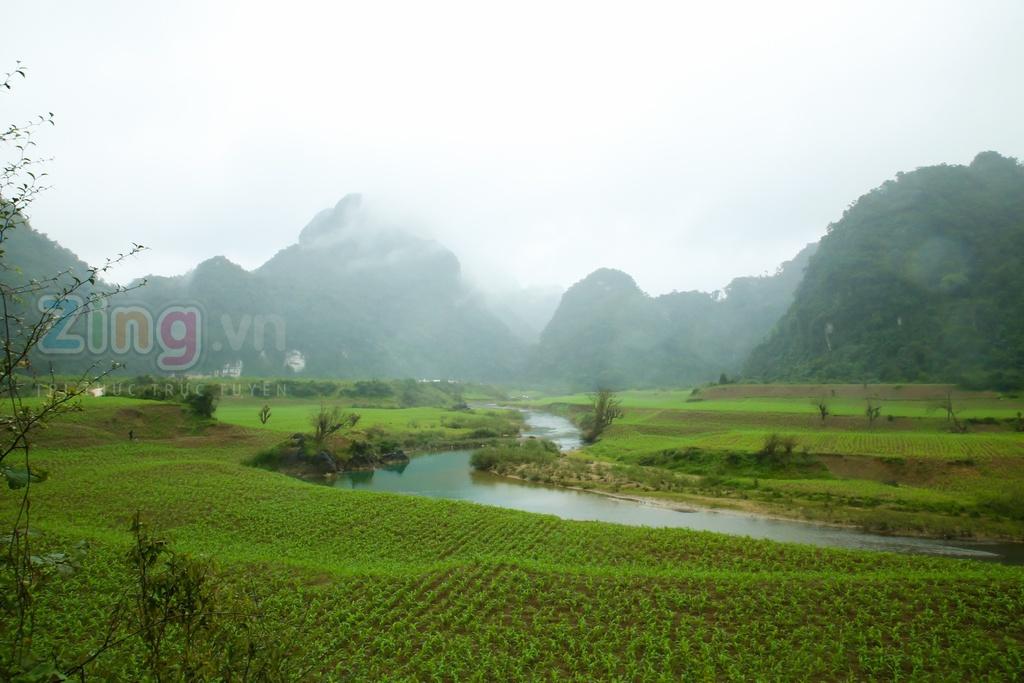 Nhung dia danh o Quang Binh lot vao may quay 'King Kong' hinh anh 2