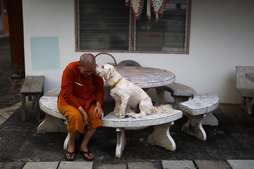 Phu nu Thai Lan dau tranh doi quyen xuat gia lam nha su hinh anh 6