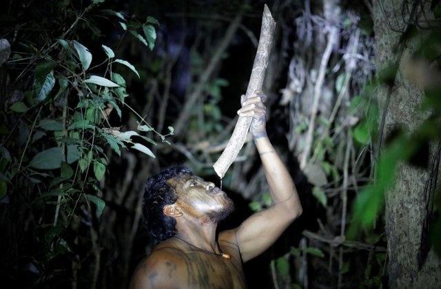 'Soi' Paulo - nguoi bao ve Amazon vua bi lam tac sat hai hinh anh 5
