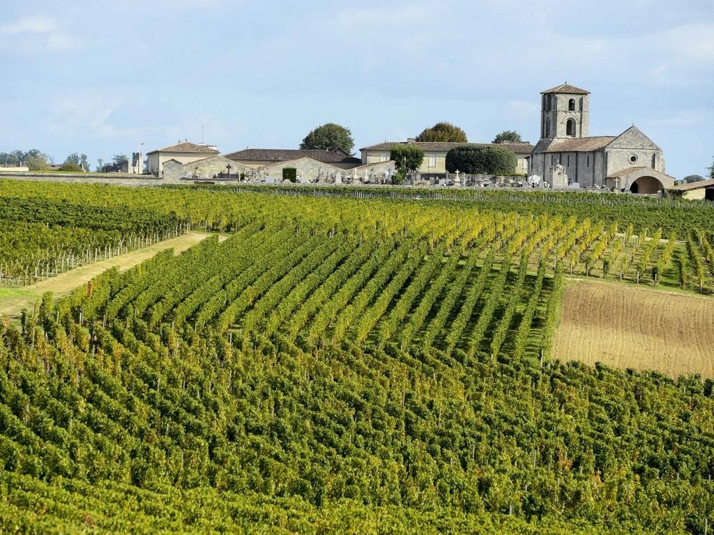 Nhung dieu dang tiec neu bo qua khi den Phap hinh anh 12 Nếm thử rượu vang ở Bordeaux.