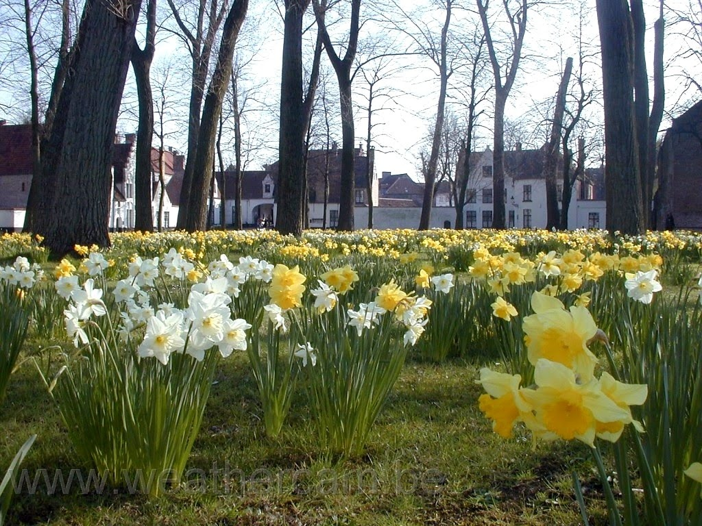 Bruges - thanh pho co tich o chau Au hinh anh 6