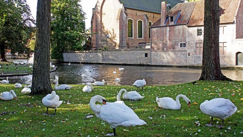 Bruges - thanh pho co tich o chau Au hinh anh 5