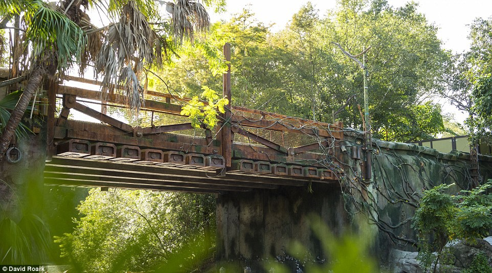 Disneyland mo cua Pandora,  The World of Avatar anh 6