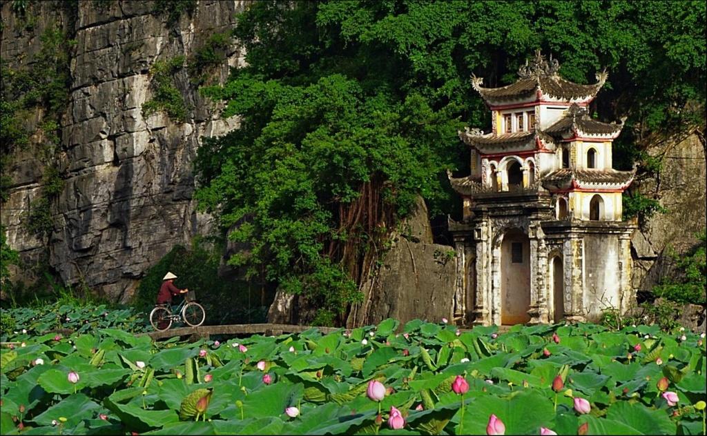 Non nuoc Ninh Binh dam chat 'Dau an Viet Nam' hinh anh 3