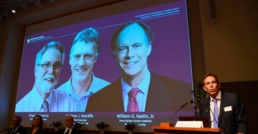 Nobel Y Sinh 2019 cho nghien cuu phan ung cua te bao khi oxy thay doi hinh anh 2
