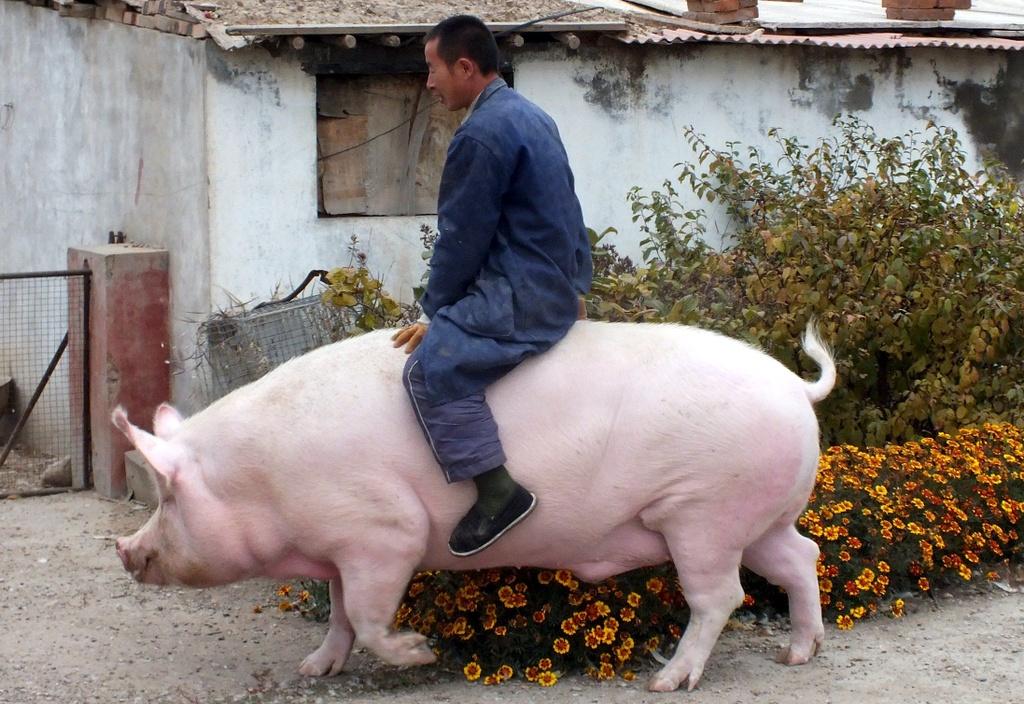 Bi mat quoc gia cua Trung Quoc trong ham chua chien luoc hinh anh 4