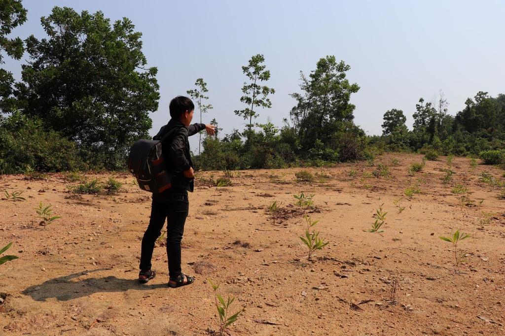 Von 1 ty, Ba Vang Quang Nam tung du tinh xay khu tam linh 1.000 ty hinh anh 2