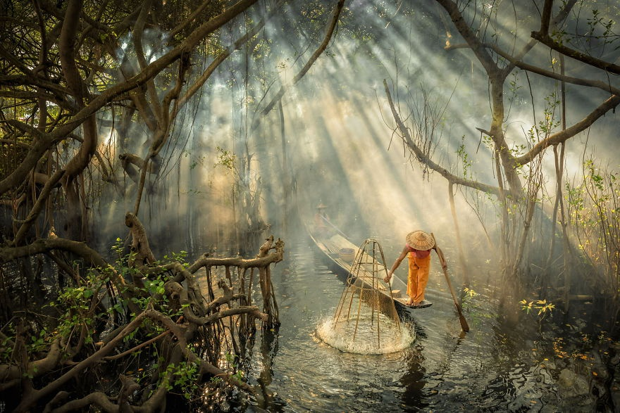 Loat canh dep Viet Nam vao top 50 anh song nuoc an tuong nhat the gioi hinh anh 9 Afternoon_sunlight_magic_by_zayyarlin_Myanmar_5e86080d48b0a_880.jpg