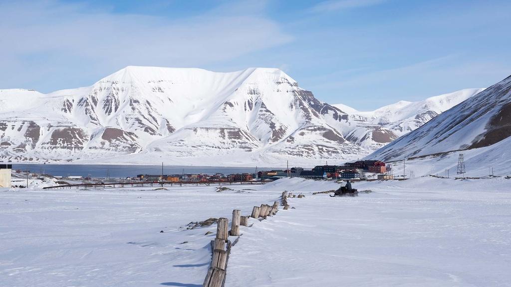 Nơi gấu Bắc Cực nhiều hơn con người