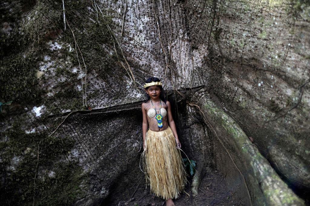 Bo lac Brazil nhay mua, cau nguyen de rung Amazon het chay hinh anh 10