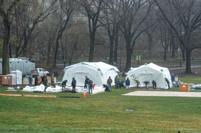 New York lap benh vien da chien o ngay Central Park hinh anh 4 PRI_147950767_MEGA.jpg