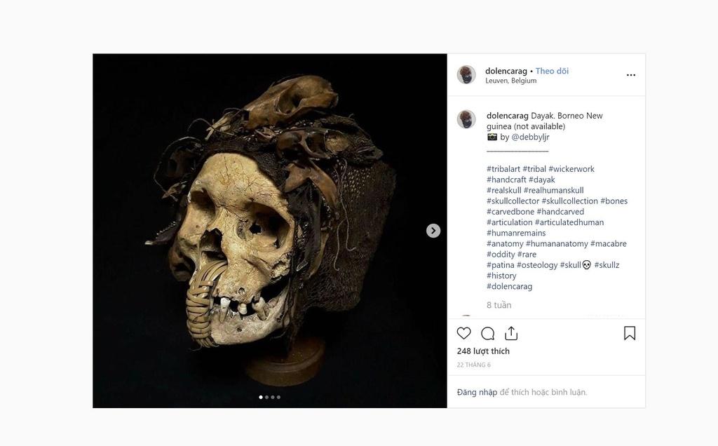 Suu tap dau lau - thu choi no ro tren Instagram hinh anh 3
