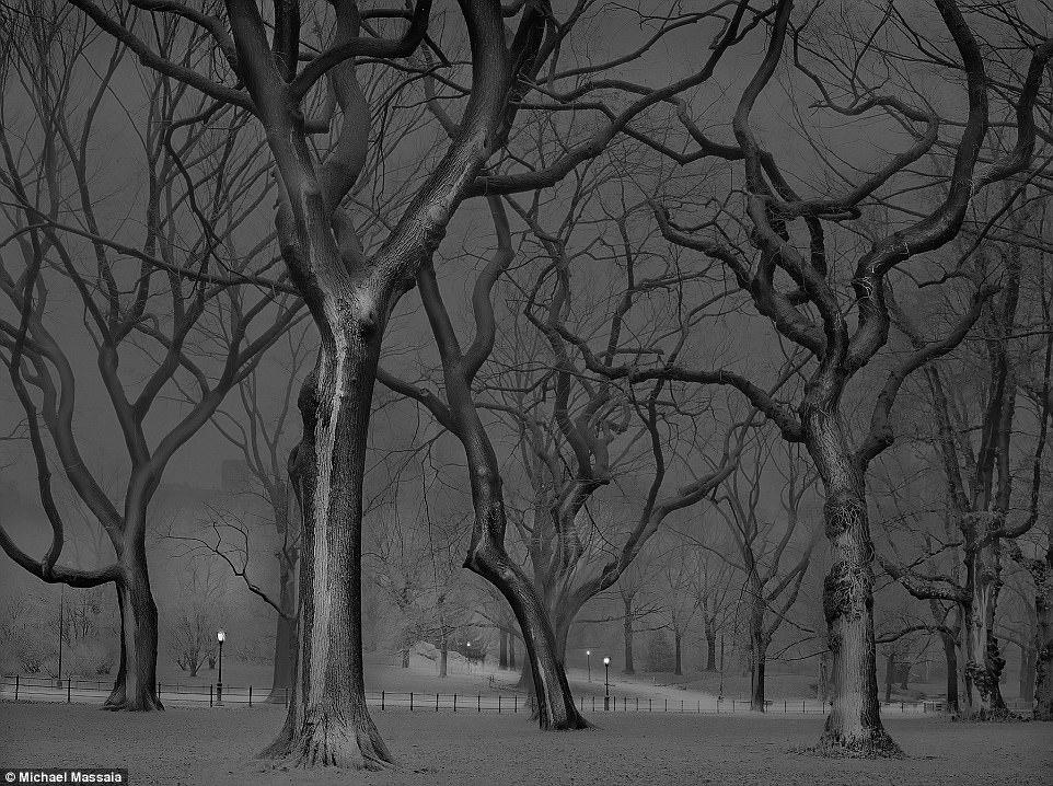 Central Park am u khong mot bong nguoi vao ban dem hinh anh 11